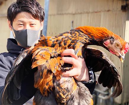 炭火焼き鶏 鶏尽